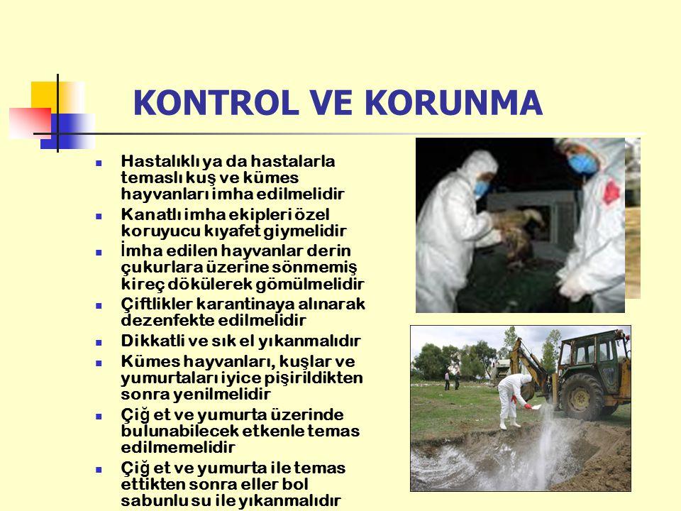 KONTROL VE KORUNMA Hastalıklı ya da hastalarla temaslı kuş ve kümes hayvanları imha edilmelidir.
