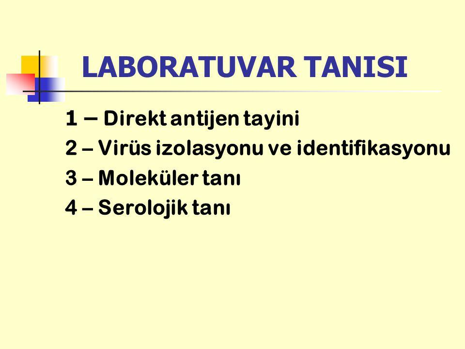LABORATUVAR TANISI 1 – Direkt antijen tayini