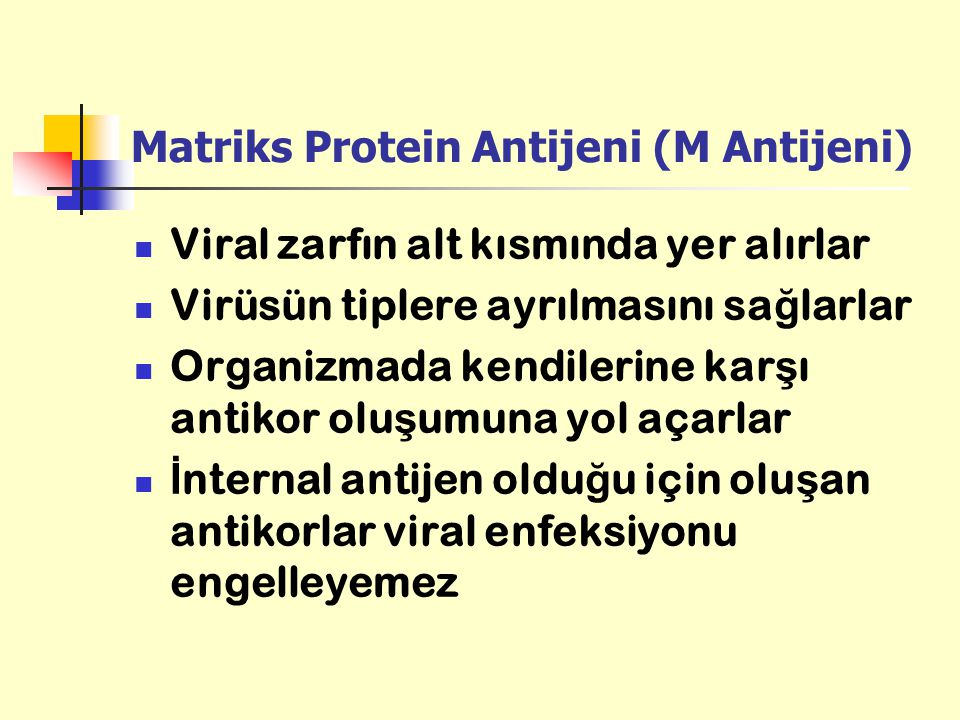 Matriks Protein Antijeni (M Antijeni)