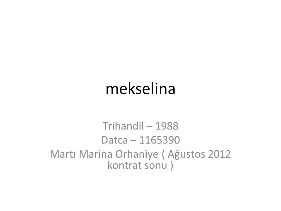 Martı Marina Orhaniye ( Ağustos 2012 kontrat sonu )