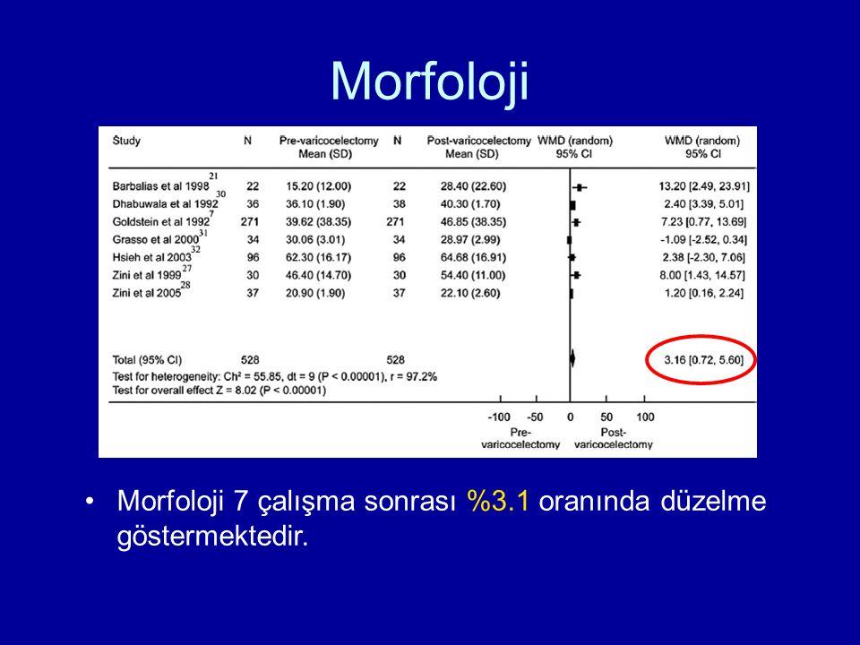 Morfoloji Morfoloji 7 çalışma sonrası %3.1 oranında düzelme göstermektedir.