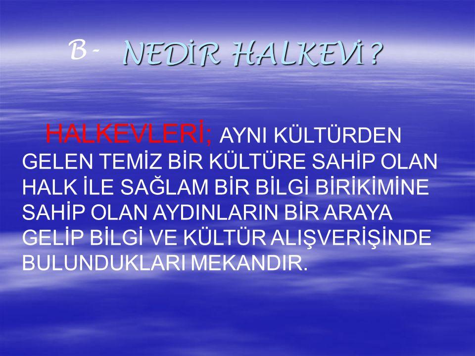 NEDİR HALKEVİ B-