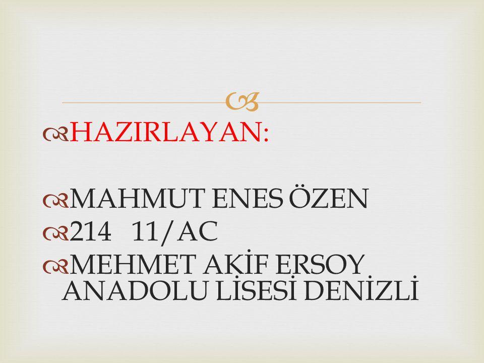 HAZIRLAYAN: MAHMUT ENES ÖZEN 214 11/AC MEHMET AKİF ERSOY ANADOLU LİSESİ DENİZLİ