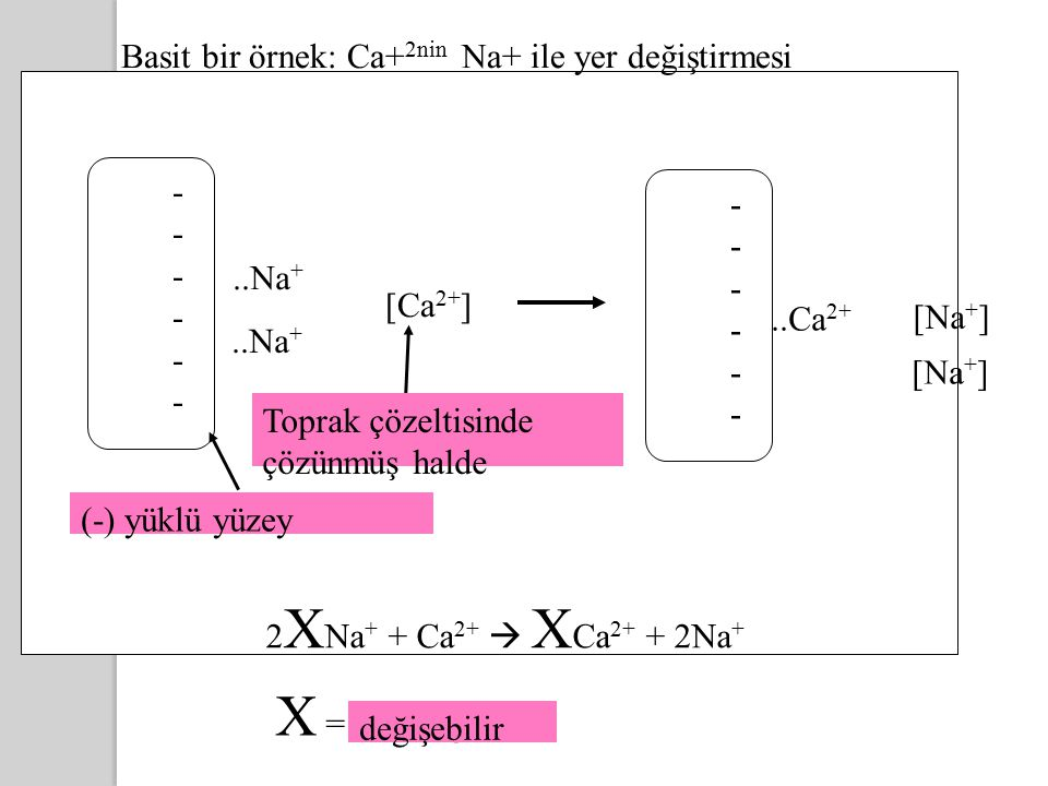X = exchangeable Basit bir örnek: Ca+2nin Na+ ile yer değiştirmesi - -
