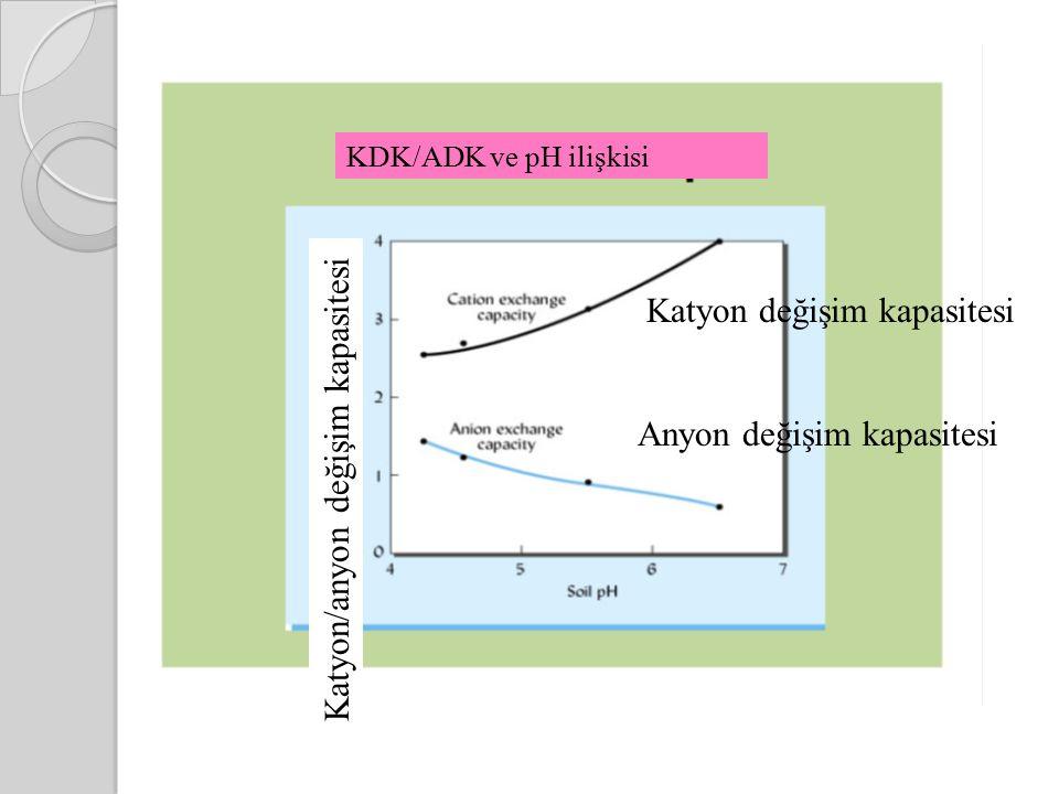 Katyon değişim kapasitesi