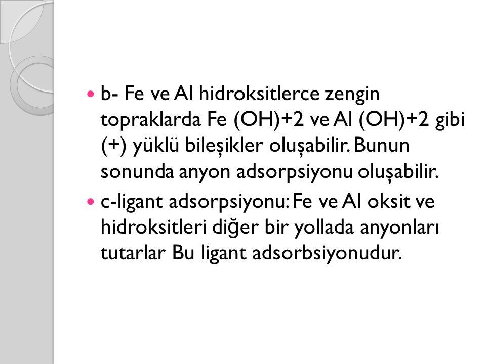 b- Fe ve Al hidroksitlerce zengin topraklarda Fe (OH)+2 ve Al (OH)+2 gibi (+) yüklü bileşikler oluşabilir. Bunun sonunda anyon adsorpsiyonu oluşabilir.