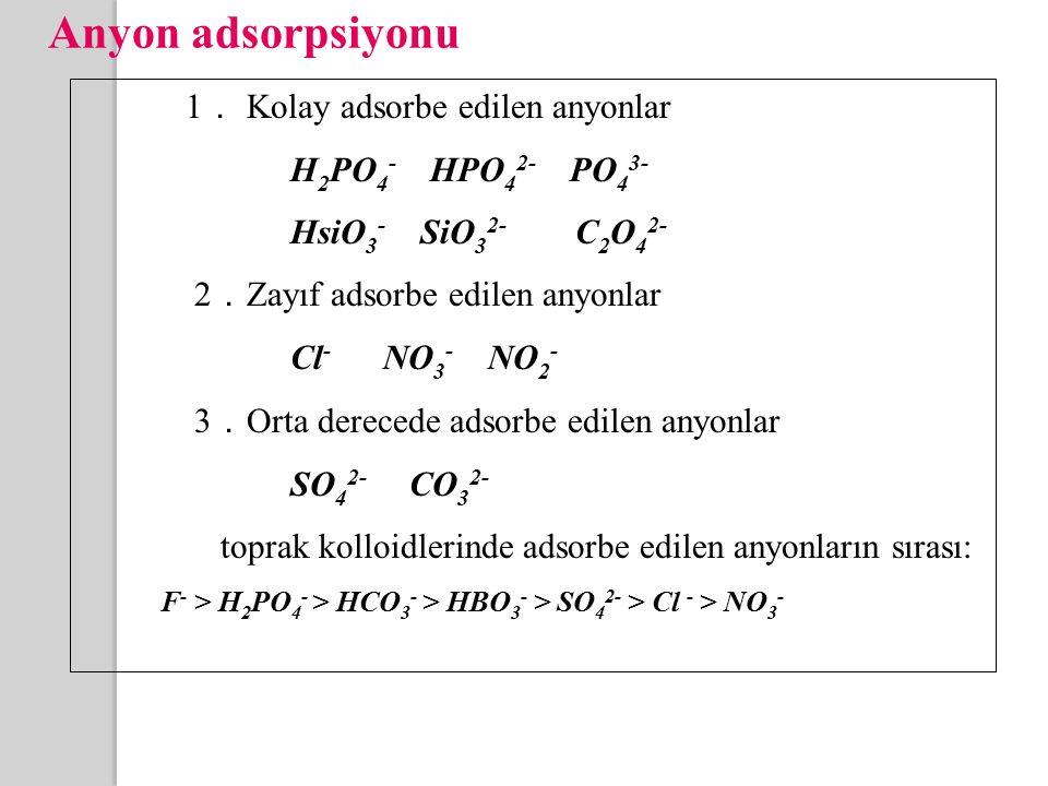 Anyon adsorpsiyonu 1. Kolay adsorbe edilen anyonlar