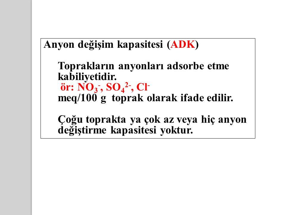 Anyon değişim kapasitesi (ADK)