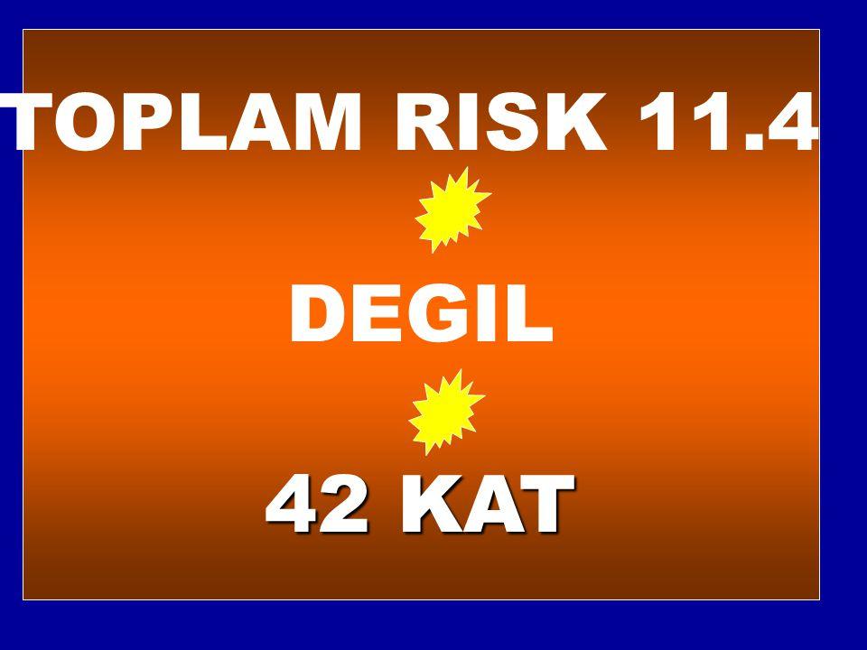 TOPLAM RISK 11.4 DEGIL 42 KAT