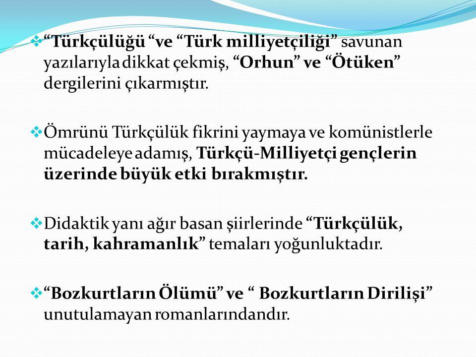Türkçülüğü ve Türk milliyetçiliği savunan yazılarıyla dikkat çekmiş, Orhun ve Ötüken dergilerini çıkarmıştır.