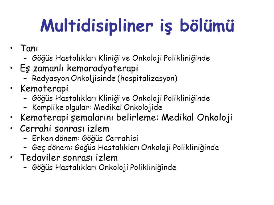 Multidisipliner iş bölümü