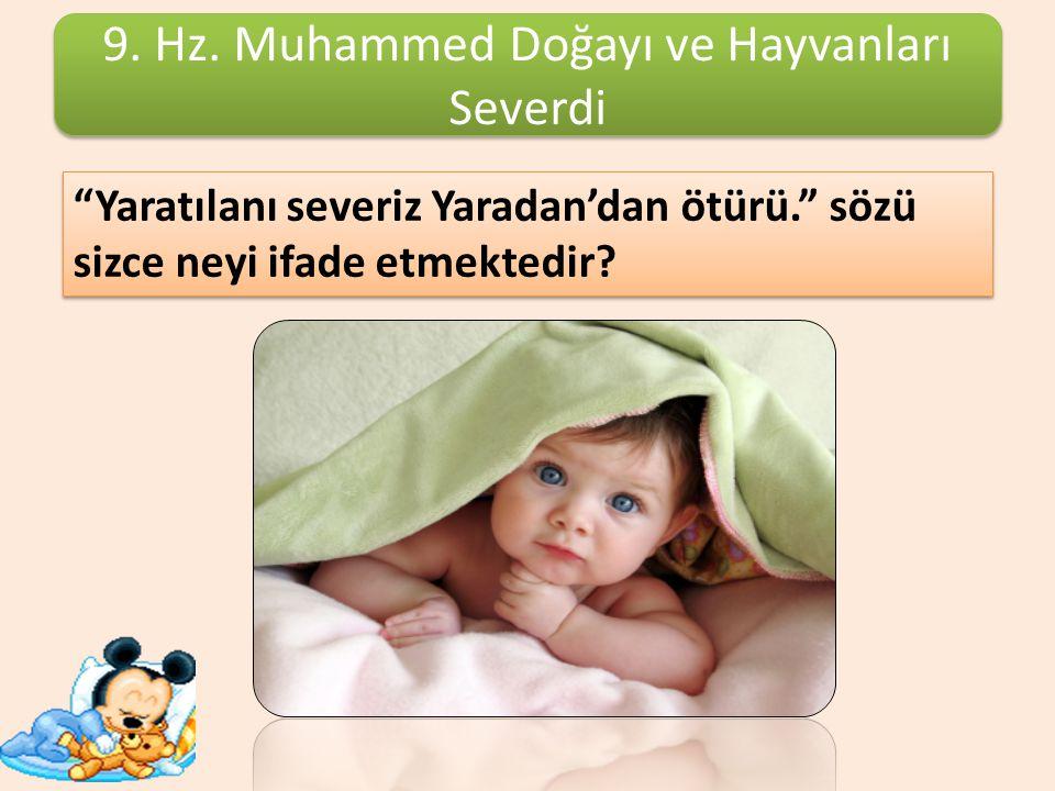 9. Hz. Muhammed Doğayı ve Hayvanları Severdi