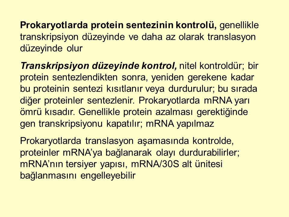 Prokaryotlarda protein sentezinin kontrolü, genellikle transkripsiyon düzeyinde ve daha az olarak translasyon düzeyinde olur