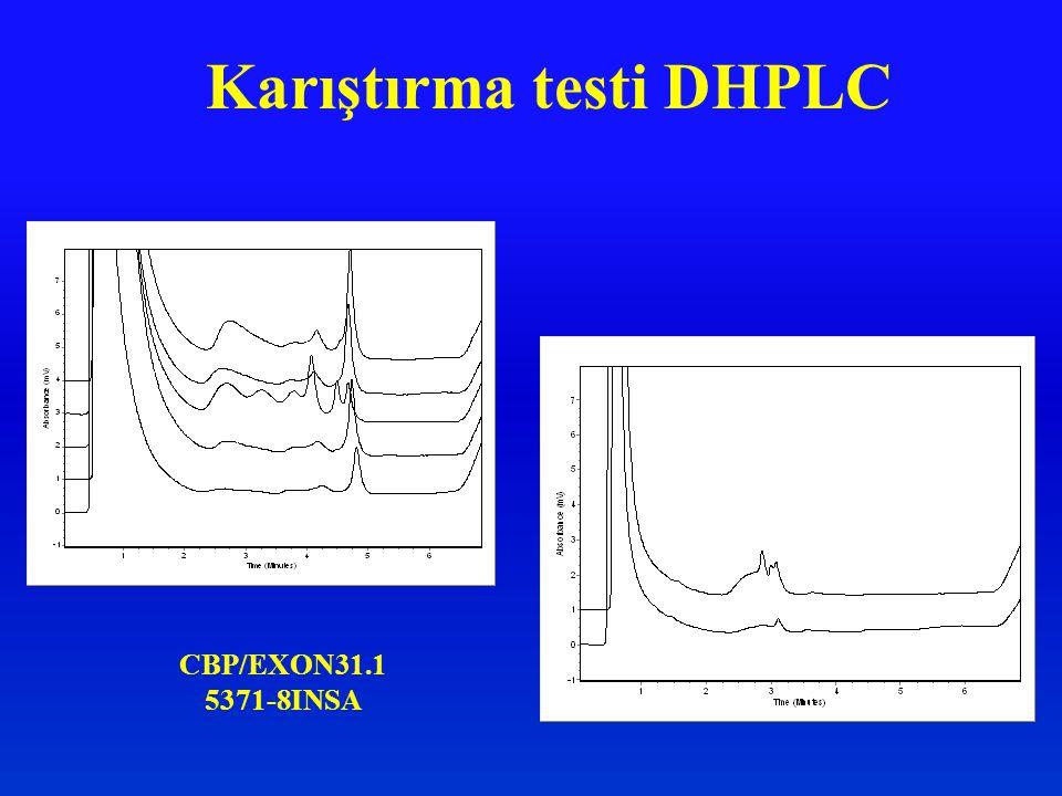 Karıştırma testi DHPLC