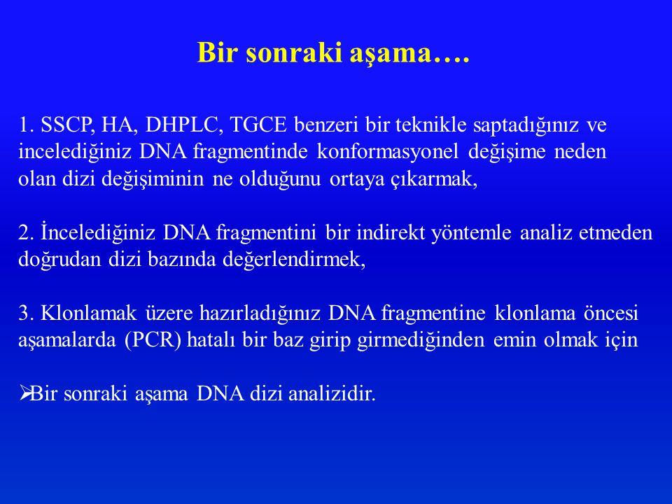 Bir sonraki aşama…. 1. SSCP, HA, DHPLC, TGCE benzeri bir teknikle saptadığınız ve. incelediğiniz DNA fragmentinde konformasyonel değişime neden.