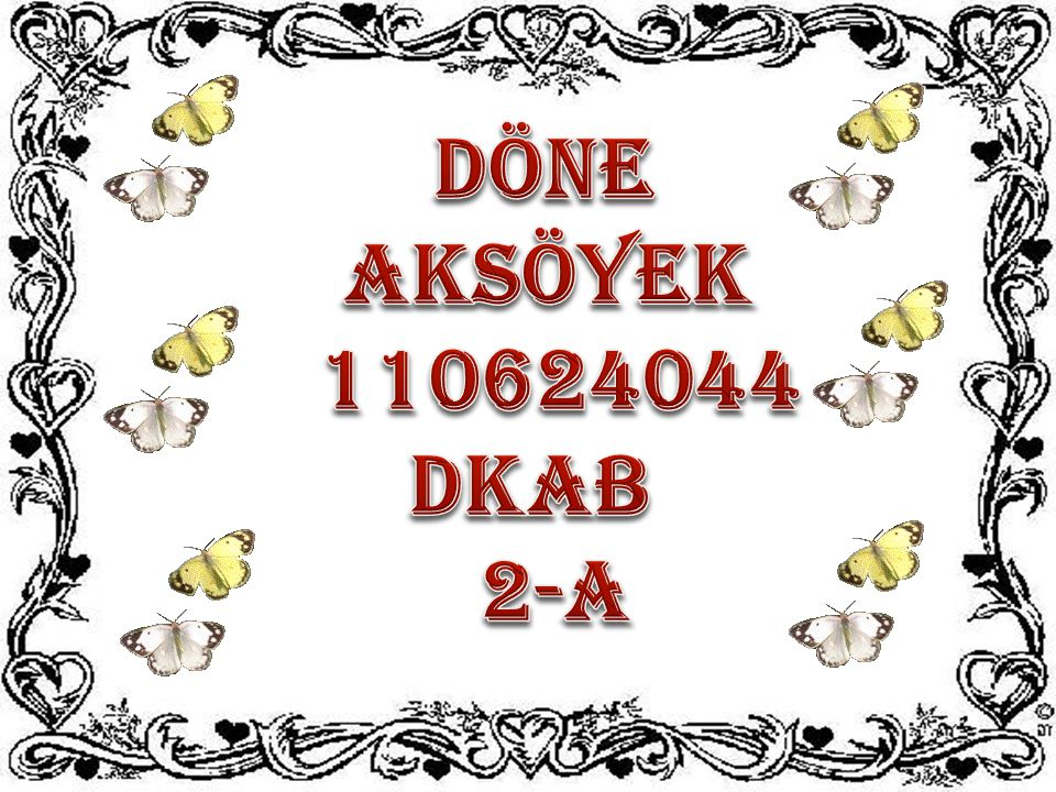 DÖNE AKSÖYEK 110624044 DKAB 2-A