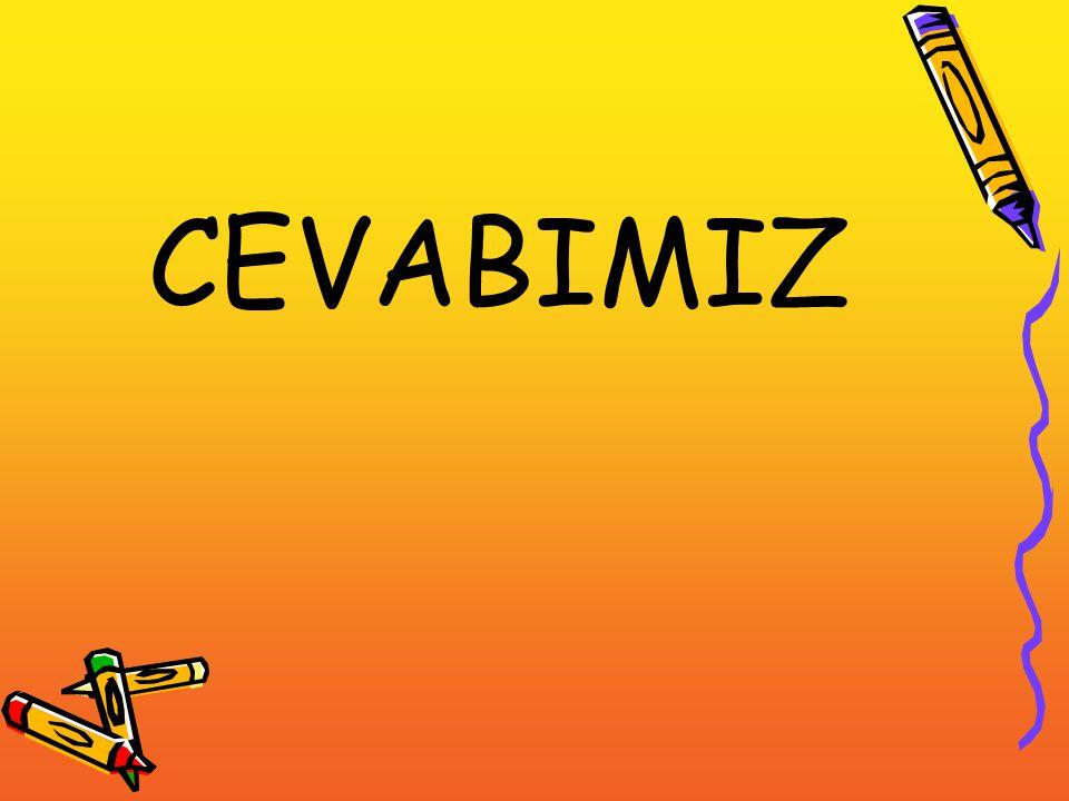 CEVABIMIZ