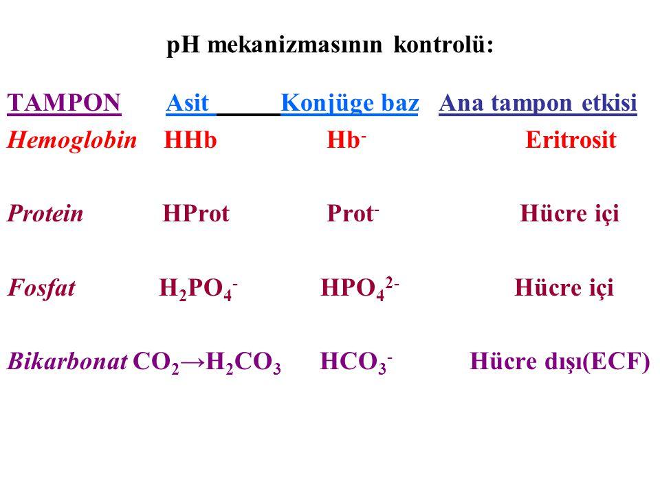 pH mekanizmasının kontrolü: