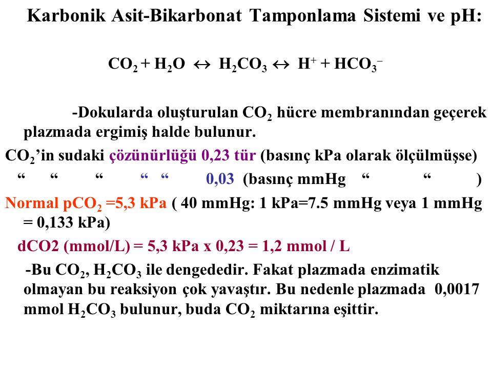 Karbonik Asit-Bikarbonat Tamponlama Sistemi ve pH: