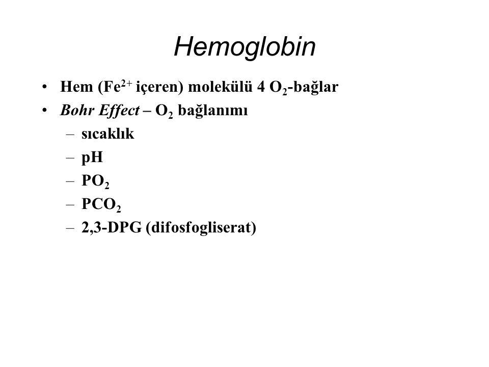 Hemoglobin Hem (Fe2+ içeren) molekülü 4 O2-bağlar