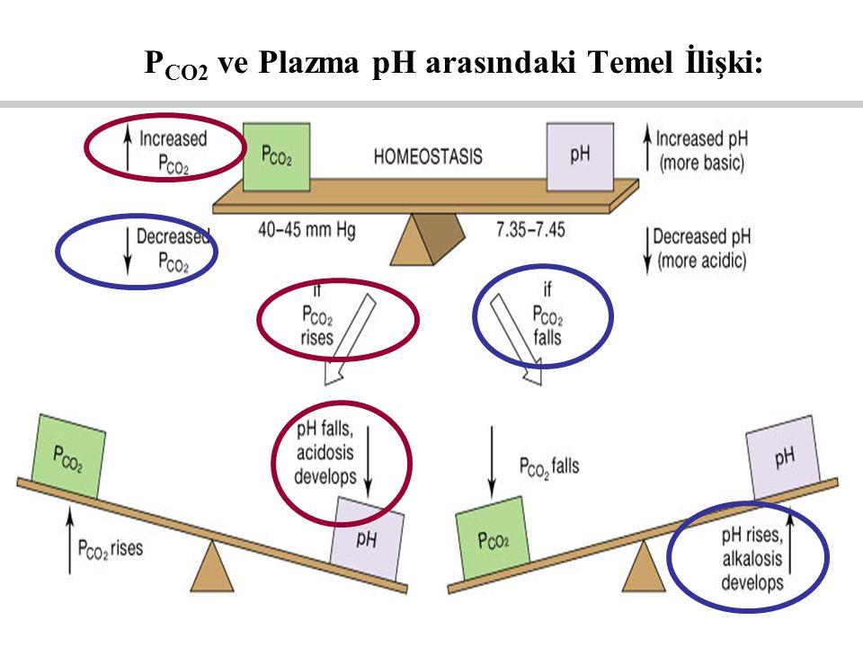 PCO2 ve Plazma pH arasındaki Temel İlişki: