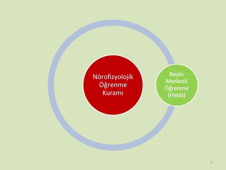 Nörofizyolojik Öğrenme Kuramı Beyin Merkezli Öğrenme (Hebb)