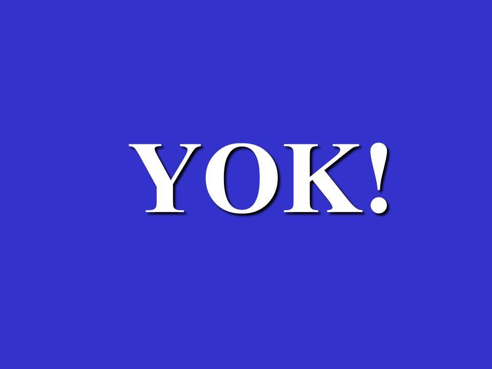 YOK! 11