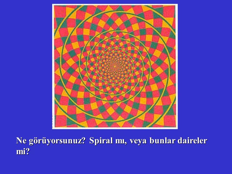 Ne görüyorsunuz Spiral mı, veya bunlar daireler mi
