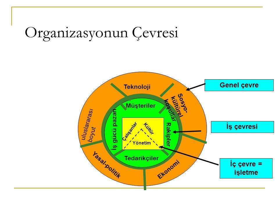 Organizasyonun Çevresi