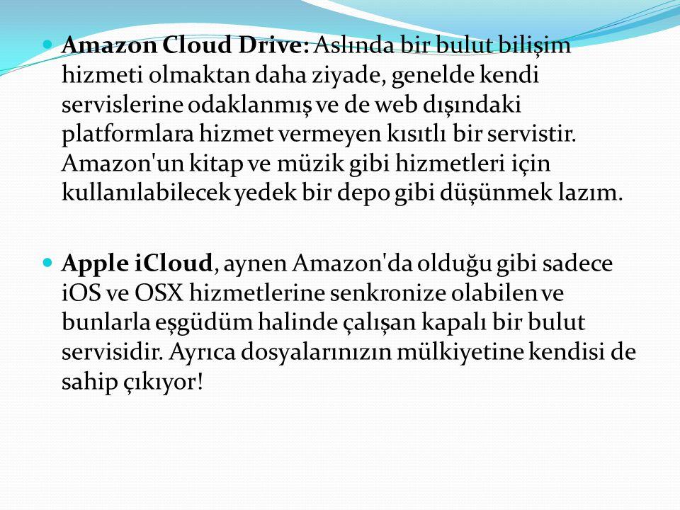 Amazon Cloud Drive: Aslında bir bulut bilişim hizmeti olmaktan daha ziyade, genelde kendi servislerine odaklanmış ve de web dışındaki platformlara hizmet vermeyen kısıtlı bir servistir. Amazon un kitap ve müzik gibi hizmetleri için kullanılabilecek yedek bir depo gibi düşünmek lazım.