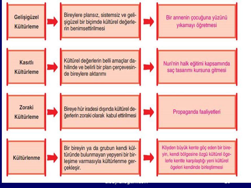 albayrakegitim.com