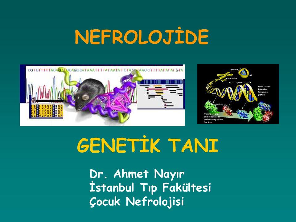 NEFROLOJİDE GENETİK TANI Dr. Ahmet Nayır İstanbul Tıp Fakültesi