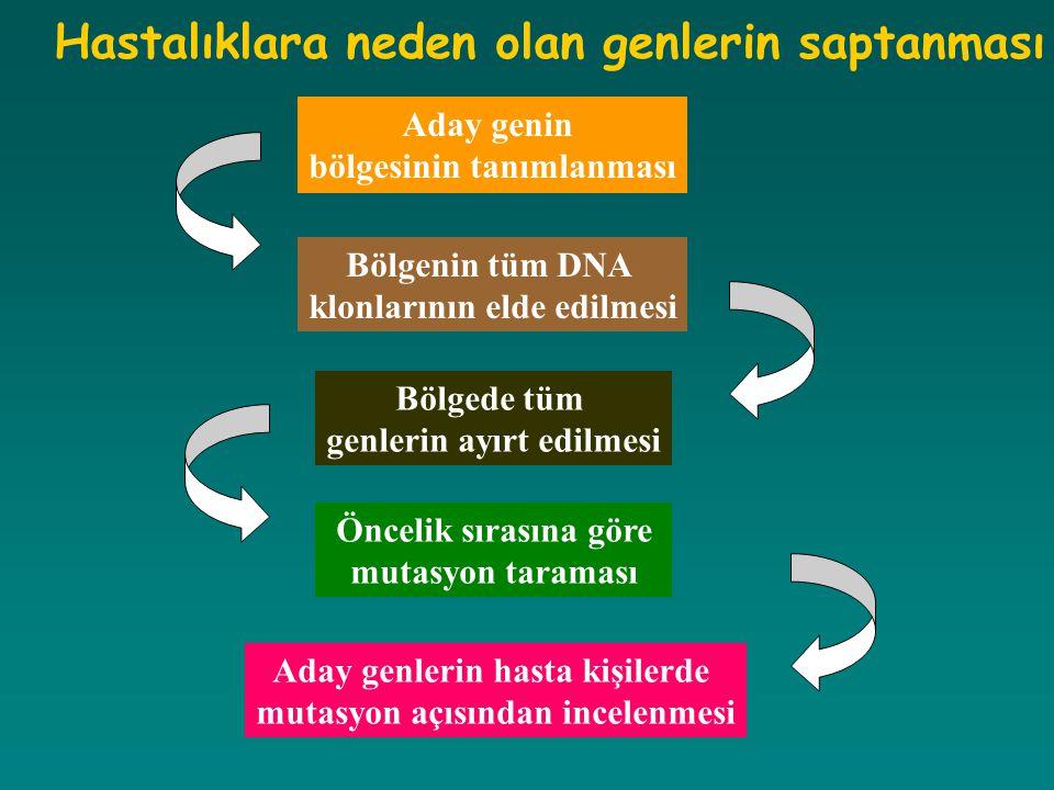 Hastalıklara neden olan genlerin saptanması