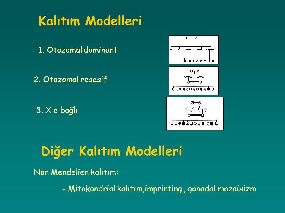 Diğer Kalıtım Modelleri