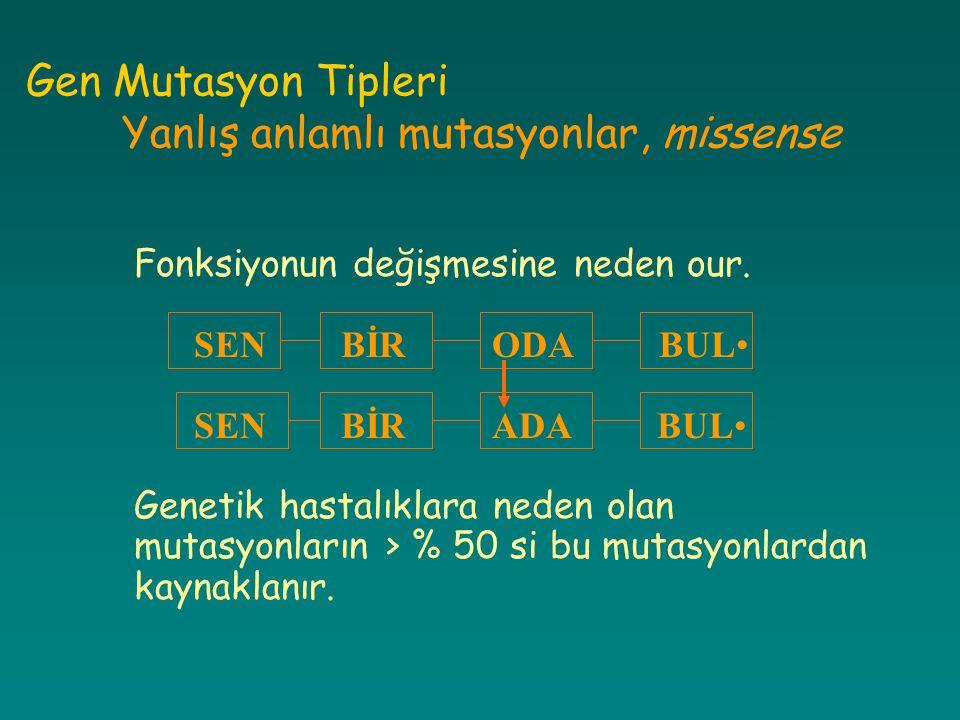 Gen Mutasyon Tipleri Yanlış anlamlı mutasyonlar, missense