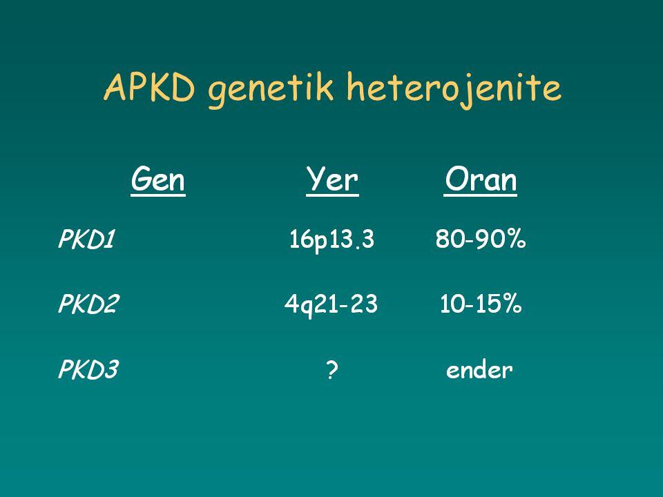 APKD genetik heterojenite