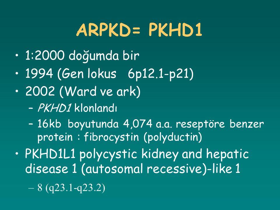 ARPKD= PKHD1 1:2000 doğumda bir 1994 (Gen lokus 6p12.1-p21)