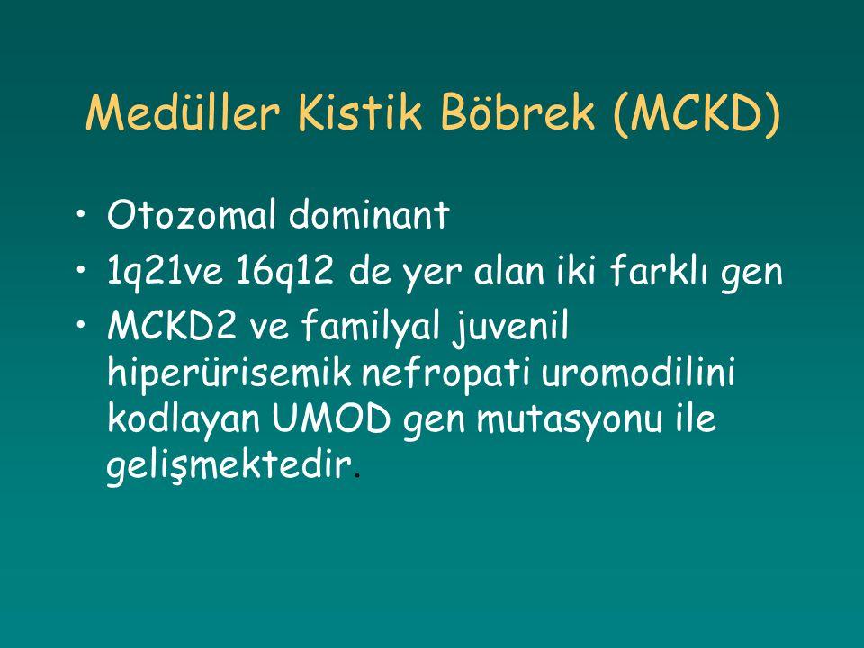 Medüller Kistik Böbrek (MCKD)