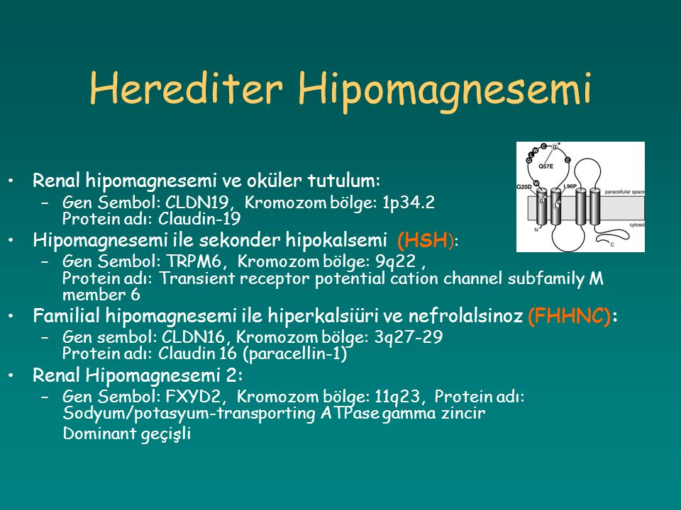 Herediter Hipomagnesemi