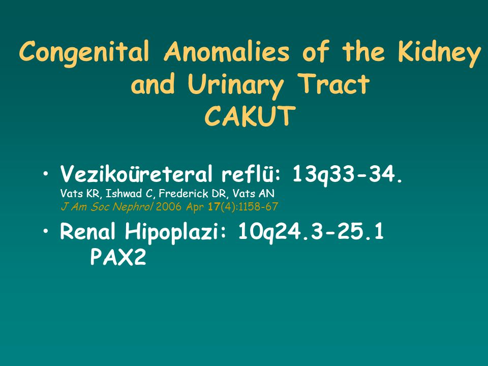 Congenital Anomalies of the Kidney and Urinary Tract CAKUT