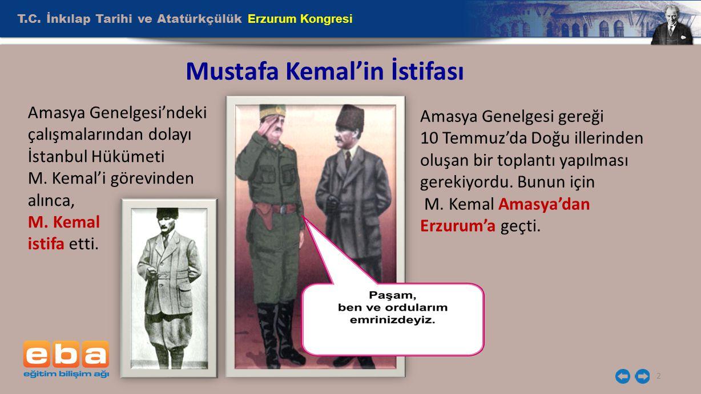 Mustafa Kemal'in İstifası