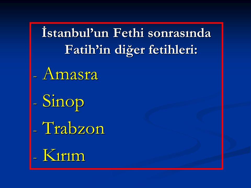 İstanbul'un Fethi sonrasında Fatih'in diğer fetihleri: