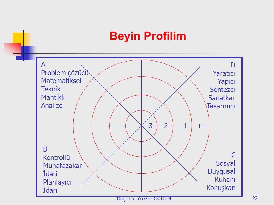 Beyin Profilim A Problem çözücü Matematiksel Teknik Mantıklı Analizci