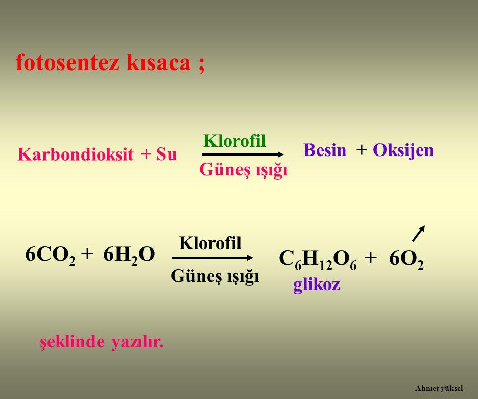 fotosentez kısaca ; 6H2O C6H12O6 + 6O2 Klorofil Besin + Oksijen