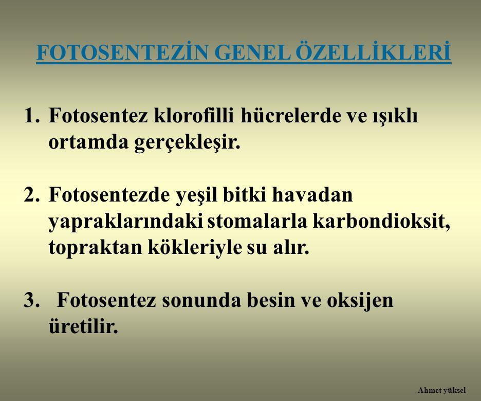 FOTOSENTEZİN GENEL ÖZELLİKLERİ