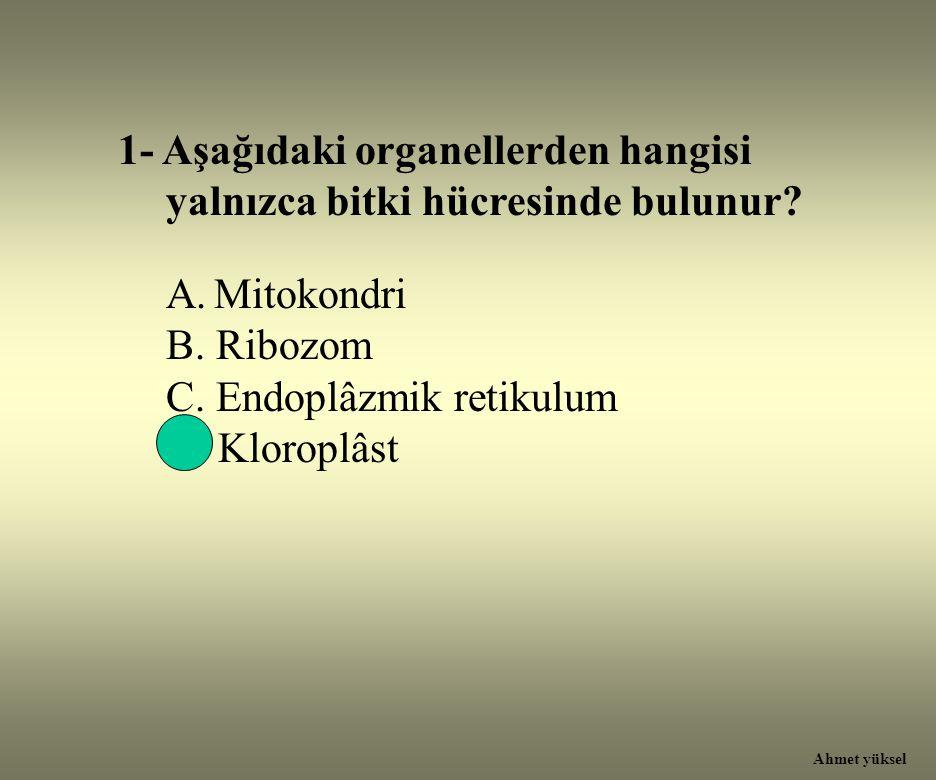 1- Aşağıdaki organellerden hangisi yalnızca bitki hücresinde bulunur
