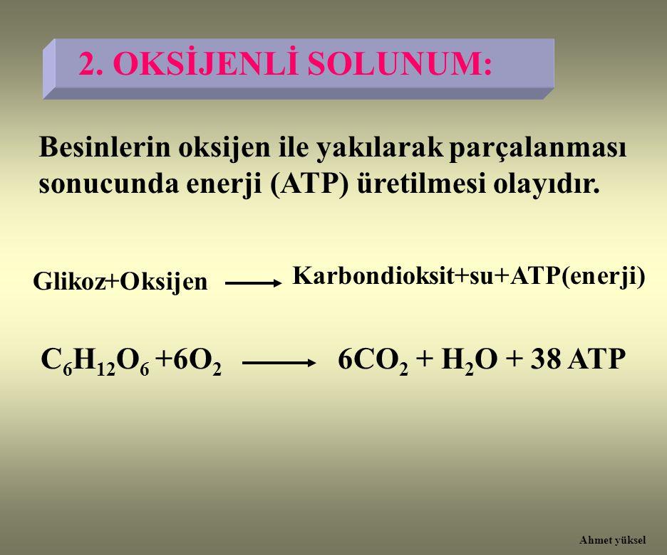 2. OKSİJENLİ SOLUNUM: Besinlerin oksijen ile yakılarak parçalanması sonucunda enerji (ATP) üretilmesi olayıdır.
