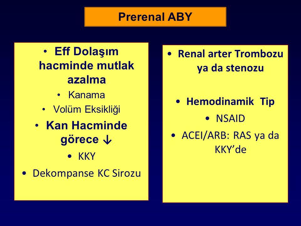 Eff Dolaşım hacminde mutlak azalma Renal arter Trombozu ya da stenozu