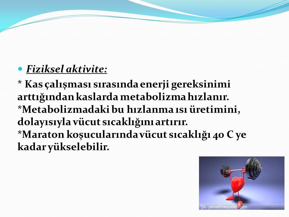 Fiziksel aktivite: