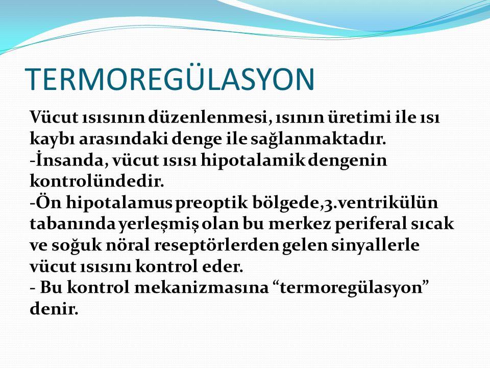 TERMOREGÜLASYON